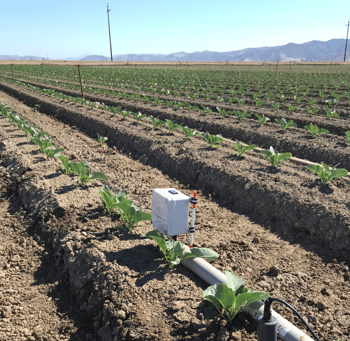 Automated irrigation use cases leafy greens